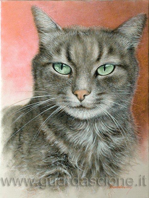 Ritratti di gatti gatto ritratto su tela - Olio di ruta repellente gatti ...